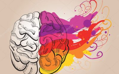 depositphotos_9421346-stock-illustration-concept-creativity-and-brain